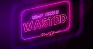 Sean Tizzle – Wasted