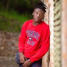 Stonebwoy hangout with Big Shaq in Los Angeles California (Watch)