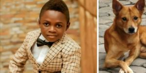 Watch Video Actor Yaw Dabo Names His Dog After 'Shatta'