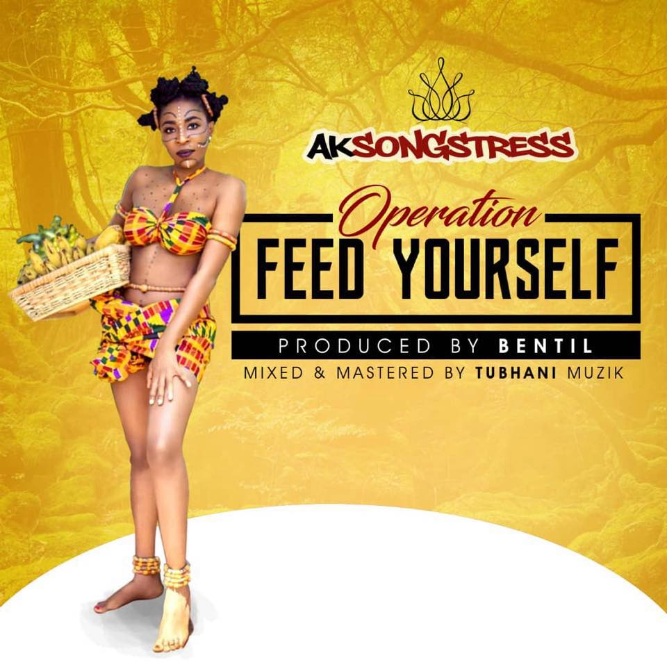 DOWNLOAD MP3 : Ak Songstress – Operation Feed Yourself