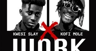 Kwesi Slay Ft. Kofi Mole - Work