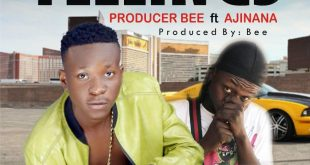 Producer Bee – Feelings ft Ajinana