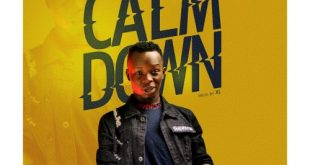 Wayde – Calm Down