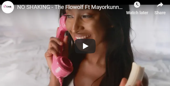 The Flowolf Ft Mayorkunn & Peruzzi – No Shaking (Official Video)