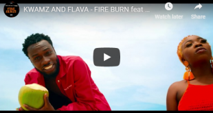 Kwamz And Flava ft Sarkodie - Fire Burn (Official Video)