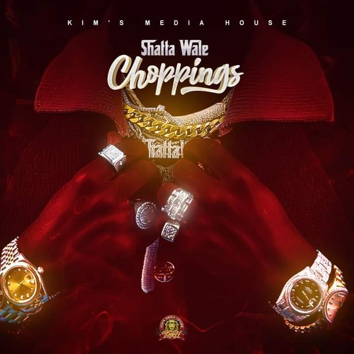 DOWNLOAD MP3 : Shatta Wale – Choppings